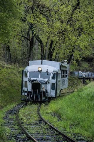 colorado railroad museum, rio grande southern, goose