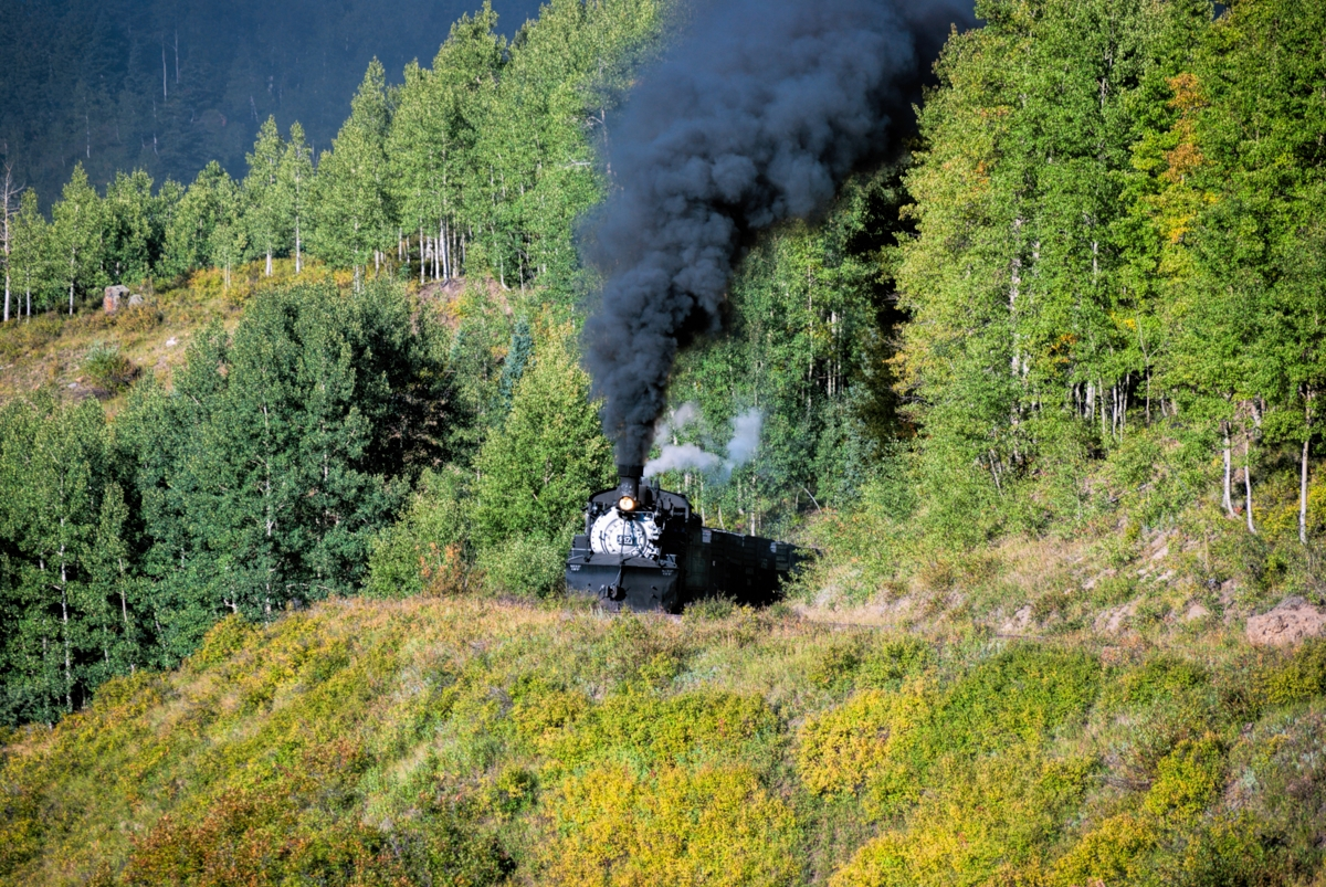 DRGW Class K-36 #487 comes into view as the morning sunshine shines on this narrow gauge locomotive near Cresco on the Cumbres...